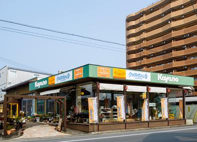 キコリ時計工房(Kicori)取扱い店舗|株式会社カヤノ HOUSE & GARDEN